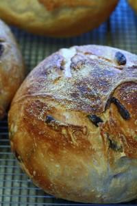 Olive bread II
